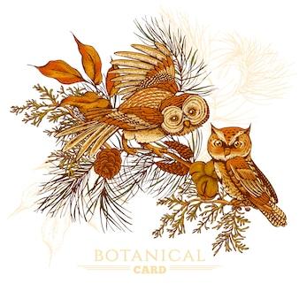 フクロウ、トウヒ、モミの木の森のグリーティングカード
