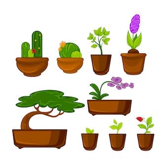 Горшки растения с цветами и листьями установлены. векторная иллюстрация