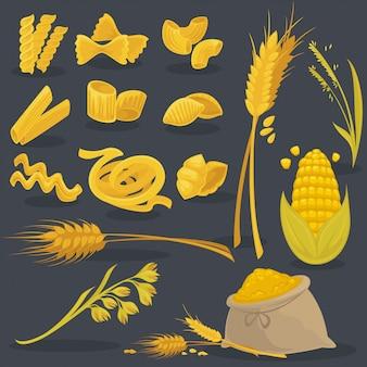 Векторный набор продуктов пшеницы. итальянская кухня.