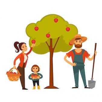 Люди собирают урожай фруктов вектор фермы сельское хозяйство