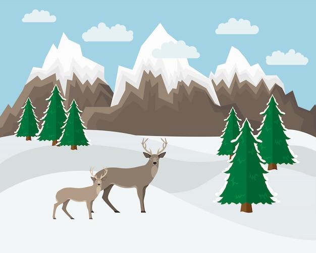 Зимний горный пейзаж
