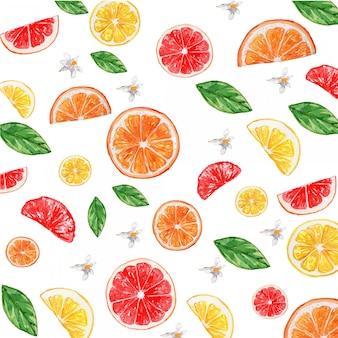 水彩柑橘系レモンオレンジグレープフルーツの花のシームレスパターン
