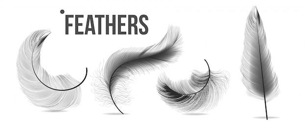 Черные перья