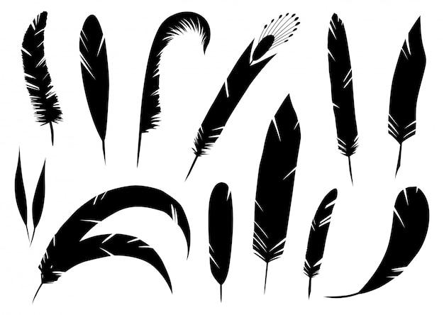Реалистичный подробный набор перьев