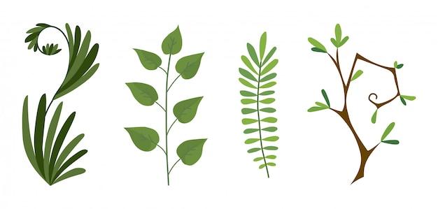 緑の森のシダ、熱帯緑ユーカリ緑アート葉自然枝のセット