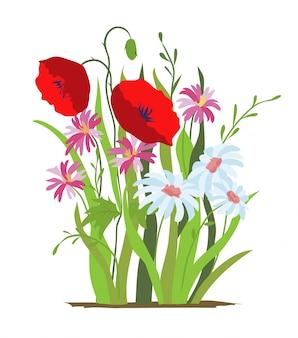 花壇。赤いケシの花。野生の森と庭の花のセットです。春のコンセプトです。