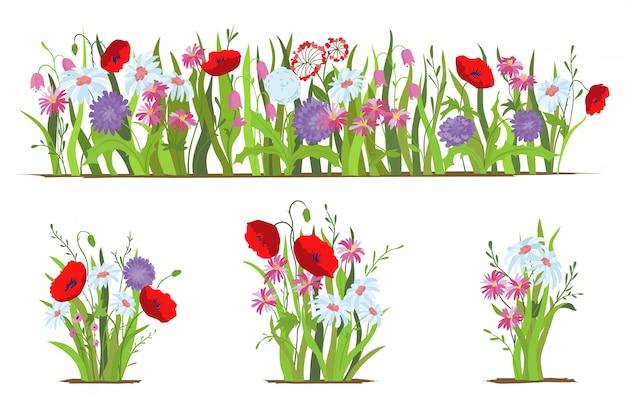 花壇。野生の森と庭の花のセットです。