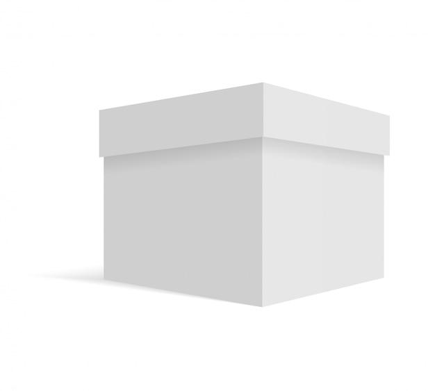 白い空白の段ボール箱