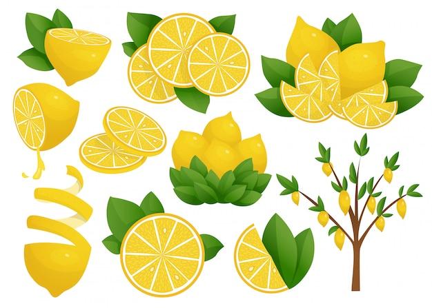 レモンスライスのセット。レモンの木。新鮮な酸っぱいレモン。
