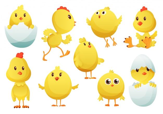 かわいい漫画鶏セット。さまざまなポーズ、イラストで面白い黄色の鶏。