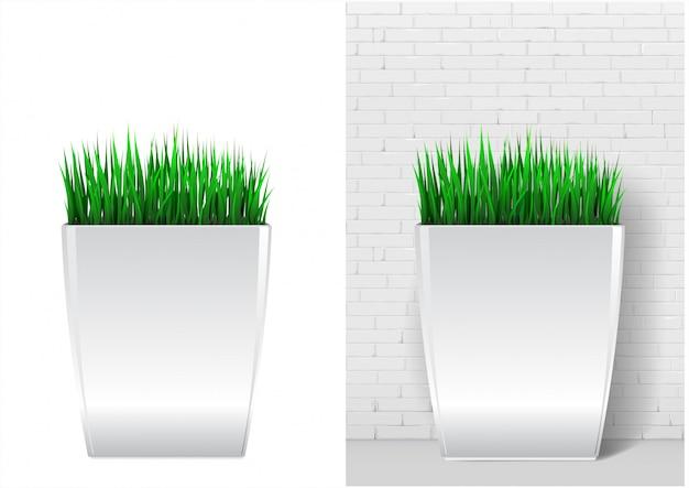 モダンな白い鍋に草の植物