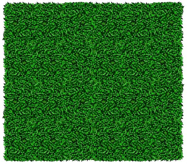 緑のブドウまたはツタの壁のテクスチャ