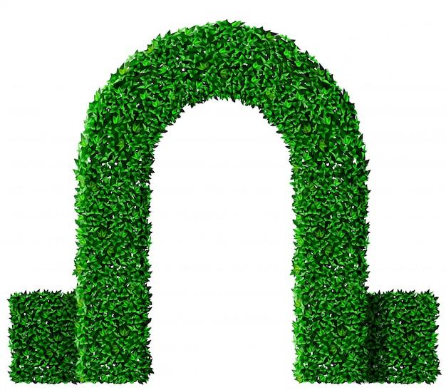 緑のツタのアーチ