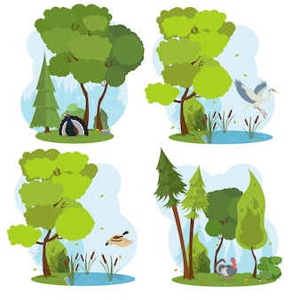 Сцены живой природы. изолированная сцена с дикими птицами.