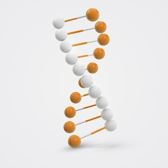 Молекулярная молекула днк, изолированная на белом