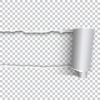 透明な背景にロールエッジを持つベクトル現実的な破れた紙
