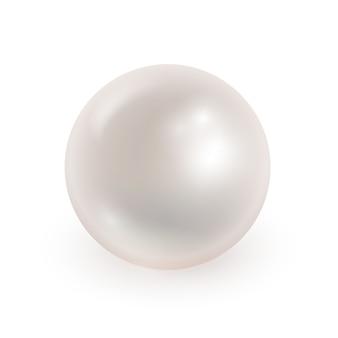 分離されたリアルな真珠のベクトルイラスト