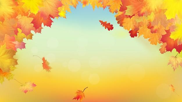 Осенний фон с золотыми листьями клена и дуба
