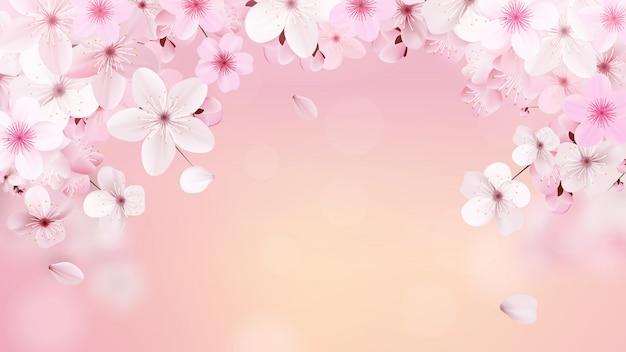 満開のライトピンクの桜の花