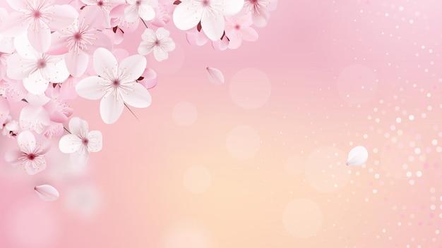 Сакура цветочный фон