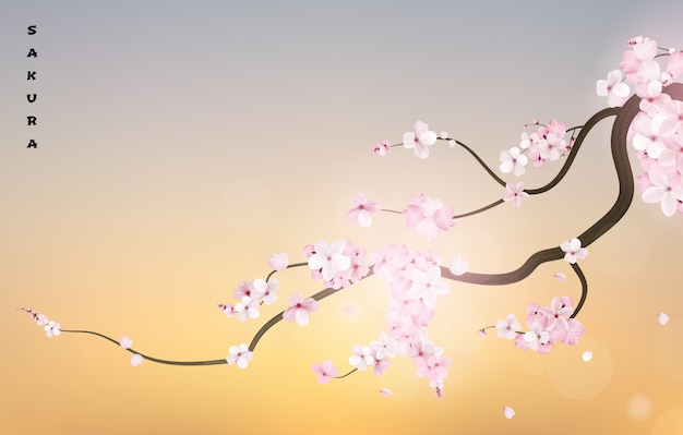 Реалистичная ветка сакуры в японии