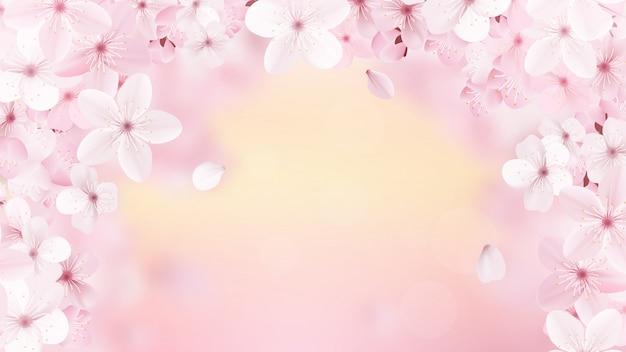 Красивый принт с цветущими светло-розовыми цветами сакуры