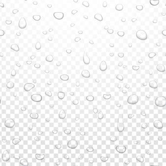 アルファ透明な背景に現実的な水の雨が値下がりしました。凝縮された純粋な液滴。窓ガラスの水の気泡をクリアします。