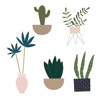 Векторный набор домашних растений в горшке