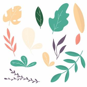 葉 - 熱帯
