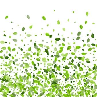 Болото листья весна плакат. летающий лист