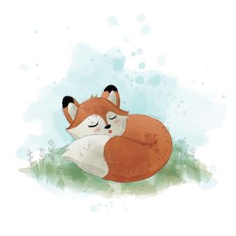 かわいいキツネが寝ています