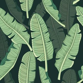 バナナの葉の熱帯パターン