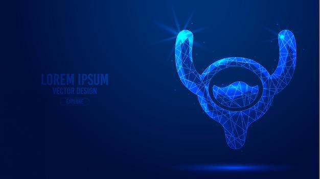 人間の膀胱構造の幾何学的な線、低ポリスタイルワイヤフレームバナーテンプレート。