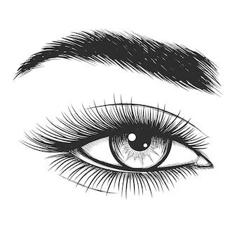 美しい女性の目のスケッチ