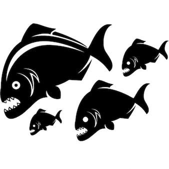 Пираньи рыбы векторные иллюстрации