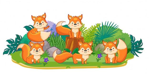 Лисы играют вместе в саду