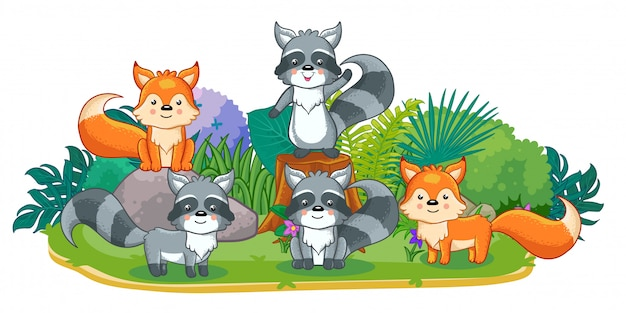 かわいい野生の動物が庭で遊んでいます