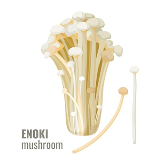 Эноки грибы длинные, тонкие белые золотые иглы футу или лилии грибов вектор
