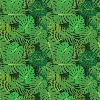 モンステラと熱帯の背景