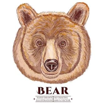 クマの肖像画、手描きイラストベクトル化