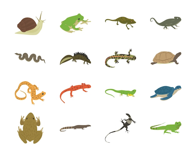 Рептилии плоские иконки