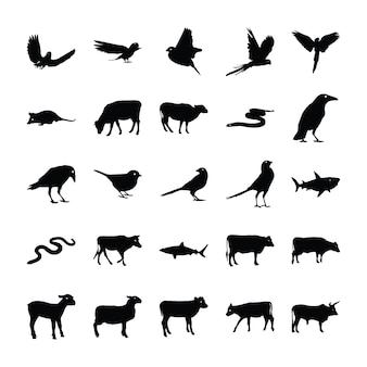 動物絵文字パック