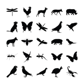 Глиф пиктограмм животных