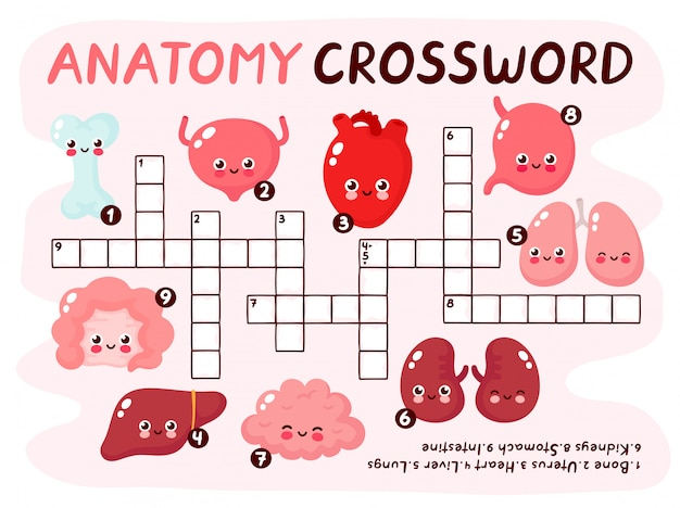 人体解剖学クロスワードパズルゲーム。かわいい笑顔幸せな人間の健康的な強い臓器セット。