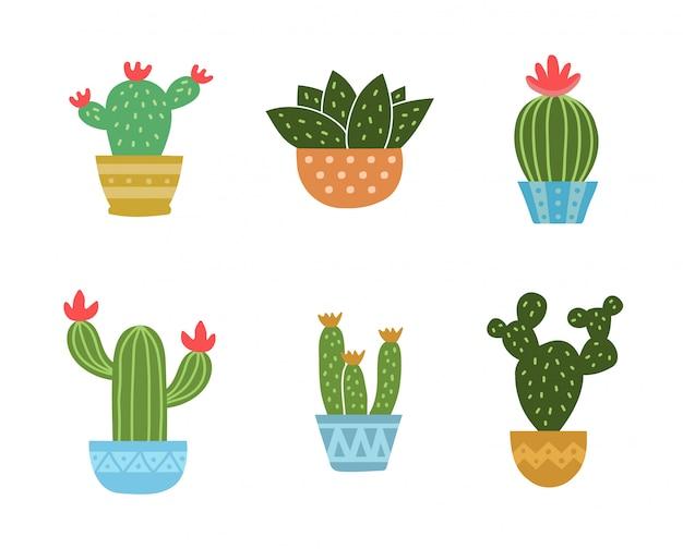 Набор из коллекции кактусов. вектор современный плоский стиль мультфильма. изолированные