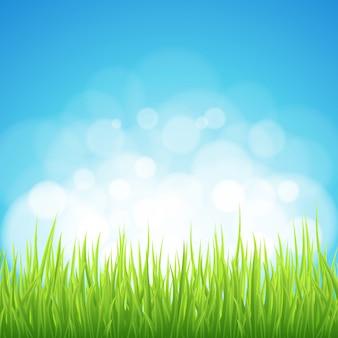 春の緑の草のボケ味の背景