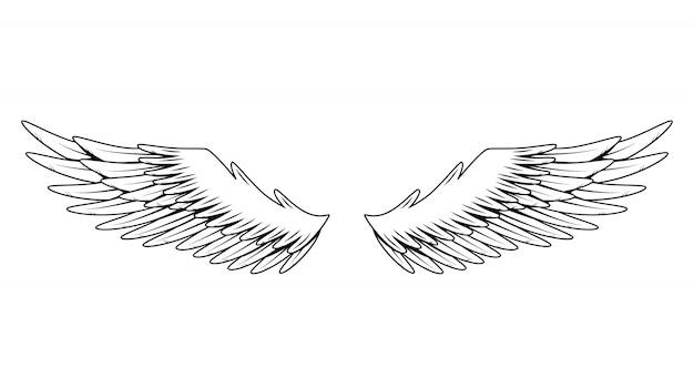 ヴィンテージの紋章の翼。モノクロの様式化された鳥の翼。着色スタイルのデザイン要素。抽象スケッチ