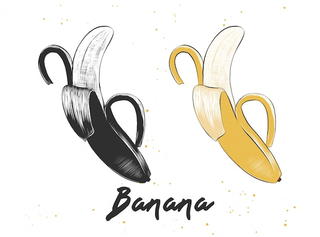 Ручной обращается эскиз банана