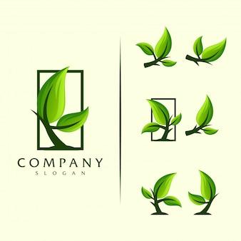 Логотип дерева листьев