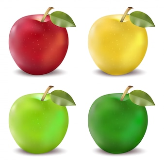 Красные и зеленые яблоки установлены. фотореалистичная векторная иллюстрация яблока в четырех цветовых решениях